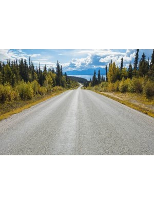 Atlin Road- Size: 368 X 254 cm