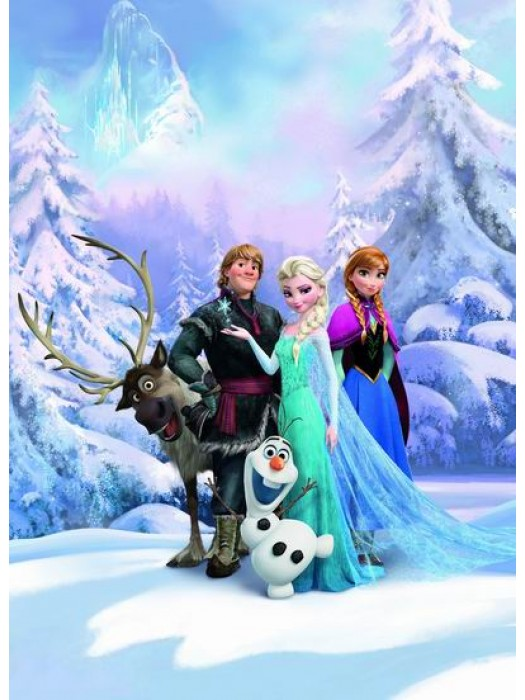Frozen Winter Land - Size:184X254cm