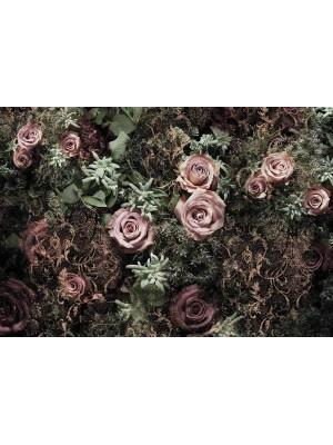Wallpaper - Velvet - Size: 368 X 254 cm