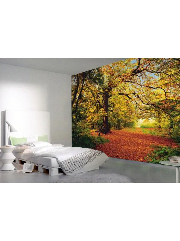 Autumn Forest- Size: 368 X 254 cm