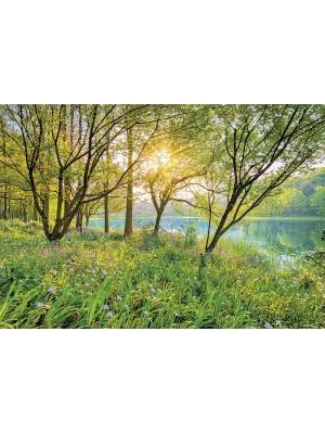 Spring Lake- Size: 368 X 254 cm