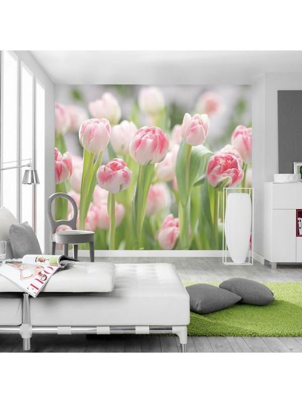 Wallpaper - Secret Garden - Size:368X254cm art: 8-708
